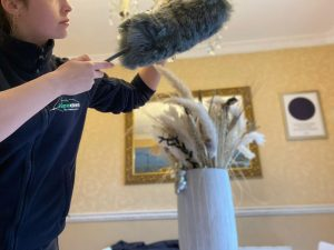 Home cleaning and domiciliary care
